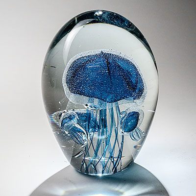 FOSSILIZED BLUE JELLYFISH