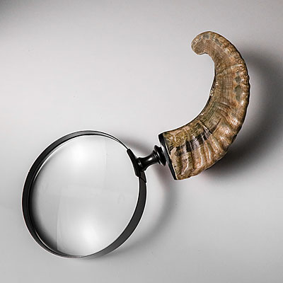 LARGE HORN MAGNIFER