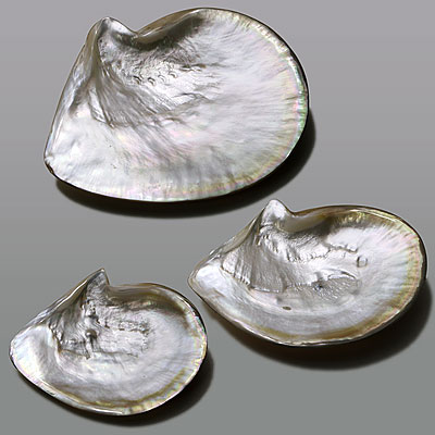 A MOTHER OF PEARL CAVIAR DISH SET