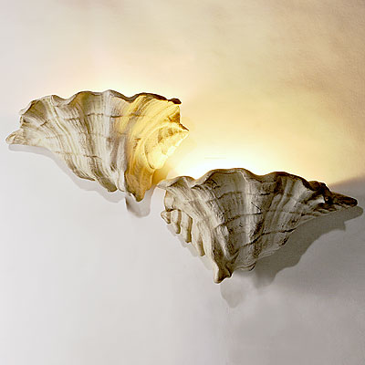 PAIR SHELL SCONCES